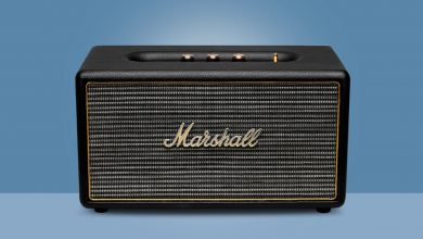 Marshall Stanmore Multirum