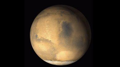 Photo of NASA vil bruge robotbier på Mars