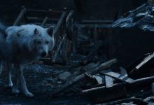 Game of Thrones: Ghost siger farvel til Jon Snow