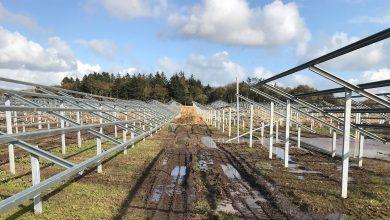 Photo of Google bygger fem solcelleparker i Danmark