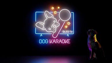 Photo of Samsung lancerer karaoke-app … til hunde