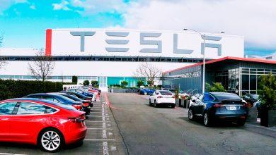 Photo of Domstol stopper Teslas tyske Gigafactory