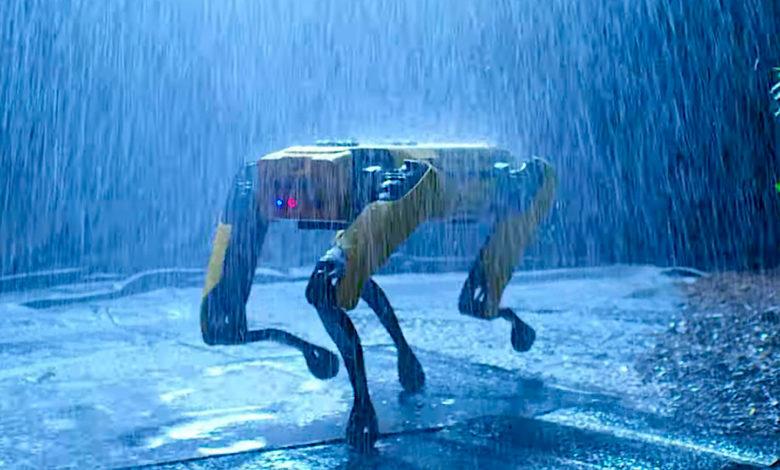 Photo of Uhyggelig firebenet robot skal sikre afstand i parker